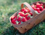 Treating Gout Naturally With Strawberries