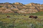 Most Popular Tourist Attractions in North Dakota