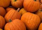 The Nutritional Benefits of Pumpkin Seeds