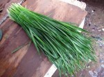 The Nutrition and remarkable Health Benefits of Chives