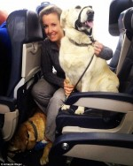 Canadian airlines permitted passenger's pets to fly with them in the main cabin