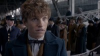 Harry Potter,'Fantastic Beasts and where to find them'.