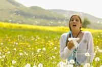 Ways to stay calm during seasonal allergies