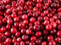 Heart patients should prefer Cranberries than drugs